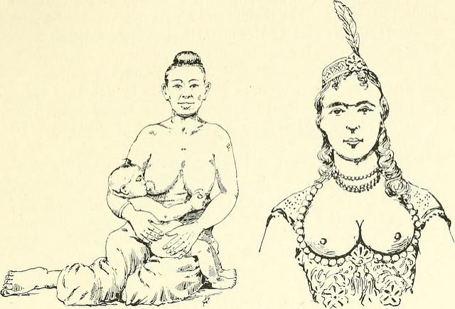 le seins dan le histoire